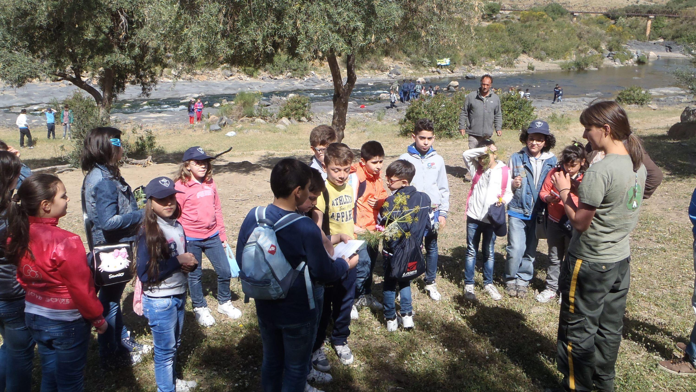 Giacche Verdi: Educazione Ambientale