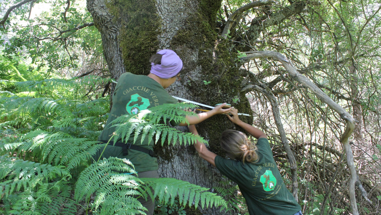 Giacche Verdi: Protezione della Natura